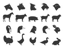 De Silhouetten en de Pictogrammen van landbouwbedrijfdieren Stock Afbeeldingen