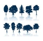 De silhouetten van bomen royalty-vrije illustratie