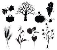 De silhouetten van de herfst Stock Afbeeldingen
