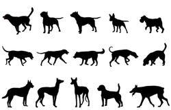 De silhouetten van de hondeninzameling Royalty-vrije Stock Foto's