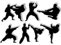 De silhouetten van de karate Stock Afbeeldingen