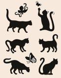 De silhouetten van de kat Stock Foto's