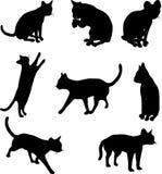 De silhouetten van de kat Royalty-vrije Stock Afbeeldingen
