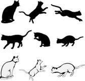 De Silhouetten van de kat Royalty-vrije Stock Afbeelding