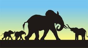 De Silhouetten van de Olifanten van de moeder en van Babys Stock Afbeeldingen