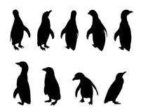 De silhouetten van de pinguïn royalty-vrije stock foto's