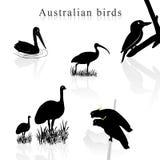 De silhouetten van de vogel Stock Afbeeldingen