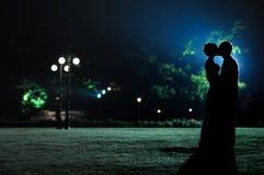 De silhouetten van de vrouw en man in het avond park stock afbeeldingen