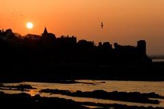 De silhouetten van de zonsondergang bij St Andrews kasteel Stock Afbeelding