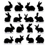 De silhouetten van het konijn Stock Foto's