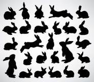 De silhouetten van het konijn Royalty-vrije Stock Afbeelding