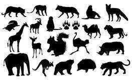 De silhouetten van wilde dieren Stock Foto