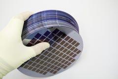 De siliciumwafeltjes van verschillende kleuren in de waaier zijn in de gloved hand royalty-vrije stock afbeelding