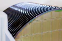 De siliciumwafeltjes in wit plastic houdersvakje op een lijsta wafeltje is een dunne plak van halfgeleidermateriaal, zoals krista royalty-vrije stock fotografie