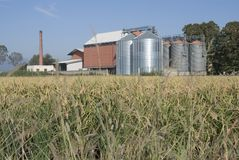 De silo's en de installatie van de rijst royalty-vrije stock afbeeldingen
