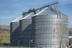 De silo's van de landbouwtarwe Stock Fotografie
