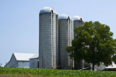 De Silo's van het landbouwbedrijf Stock Foto's