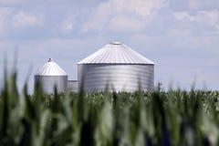 De silo van het graan stock afbeelding