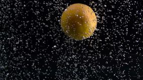 De sinaasappel valt onder het water op luchtbellen in het water op zwarte achtergrond wordt geïsoleerd die stock video