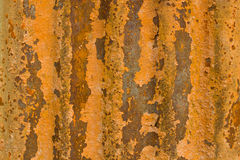 De sinaasappel van het zink Stock Afbeeldingen