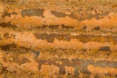 De sinaasappel van het zink Royalty-vrije Stock Afbeelding