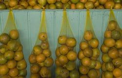 De sinaasappelen van Amazonië Stock Foto's