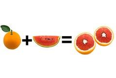 De sinaasappelen van de watermeloenmengeling Stock Foto's