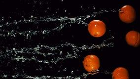 De sinaasappelen vliegen met een straal van water stock video
