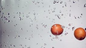 De sinaasappelen vliegen met een straal van water stock videobeelden