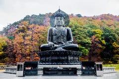 De Sinheungsa-Tempel bij het Nationale Park van Seoraksan, Zuid-Korea Royalty-vrije Stock Foto