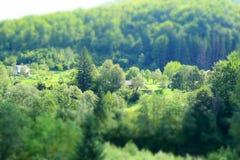 De sista dagarna av sommar i Carpathiansna Arkivbilder