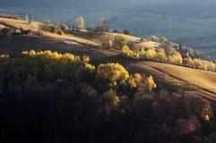De sista färgerna av hösten royaltyfri foto