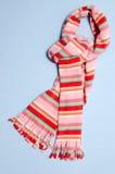 De sjaal van de winter Stock Afbeeldingen