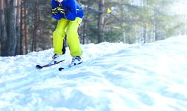 De skiër ski?t in de winterbos op de sneeuw die een sportkleding dragen Stock Afbeeldingen