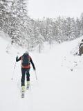 De skiër van Backcountry Stock Fotografie
