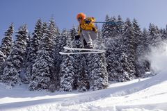De Skiër van de sneeuw stock foto's