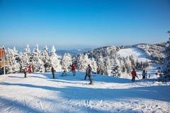 De skiërs in heldere jasjes treffen aan het ski?en voorbereidingen Royalty-vrije Stock Foto's