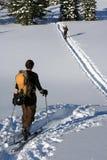 De skiërs van Backcountry stock afbeeldingen