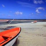 De skiff van Martinique Stock Fotografie