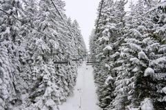 De skilift van de stoel en sneeuwlandschap. Bulgarije Stock Foto's