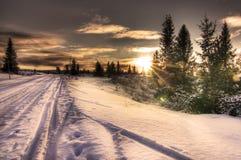 De skispoor van de winter in Noorse zonsondergang Stock Foto's