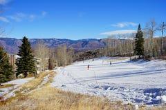 De skitoevlucht van de sneeuwmassa Royalty-vrije Stock Afbeelding