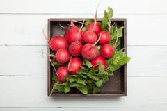 De sla van de gewassenradijs, landbouw, rode bos in doos royalty-vrije stock afbeeldingen