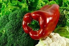 De sla van Peper, van de kool en van de salade Stock Fotografie