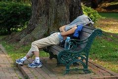 De slaap van de vrouw in het park Stock Foto's