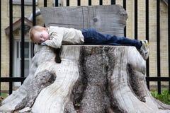 De slaap van de zoon Stock Afbeeldingen