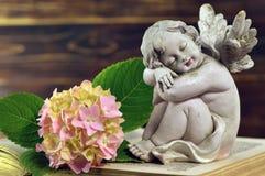 De slaap van de engelenbeschermer Royalty-vrije Stock Afbeelding