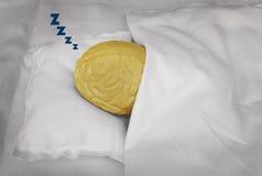 De slaap van hersenen Stock Fotografie