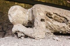 De slachtoffers van Pompei Royalty-vrije Stock Afbeeldingen