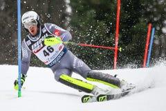 De Slalom van de Wereldbekermensen van Audi FIS stock afbeeldingen